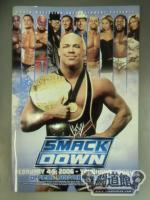 WWE SMACK DOWN! TOUR OFFICIAL SOUVENIR PROGRAM 2006