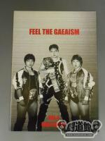 FEEL THE GAEAISM Vol.4