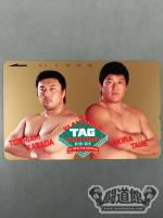 川田利明&田上明 '93REAL WORLD TAG TEAM LEAGUE