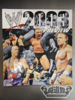 WWE MAGAZINE 2003 PREVIEW