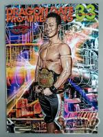 2013-2014 DRAGON GATE OFFICIAL PAMPHLET Vol.33