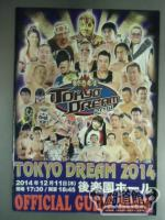 TOKYO DREAM 2014 愚連隊 OFFICIAL GUIDE BOOK