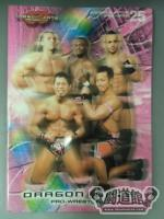2012 DRAGON GATE OFFICIAL PAMPHLET  Vol.25