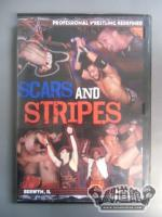 AAW SCARS AND STRIPES 2010