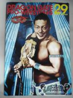 2013 DRAGON GATE OFFICIAL PAMPHLET Vol.29
