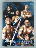 2011 DRAGON GATE OFFICIAL PAMPHLET Vol.18