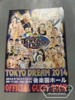 TOKYO DREAM 2014 東京愚連隊 OFFICIAL GUIDE BOOK