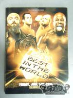 ROH ROAD TO BEST IN THE WORLD(FRIDAY.JUNE.5TH 2015)