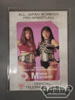 下田美馬&豊田真奈美 WWWA WORLD TAG TEAM CHAMPIONS