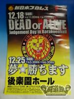 夢☆勝ちます ~DEADorALIVE judgement day in korakuenhall~