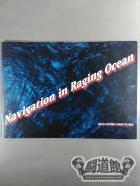Navigation in Raging Ocean