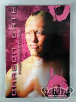 DRAGON GATE PRO-WRESTLING vol.10