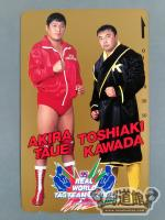 川田利明&田上明 '95 REAL WORLD TAG TEAM LEAGUE