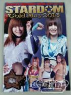 STARDOM OFFICIAL GUIDE BOOK Vol.61