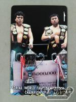 三沢光晴&川田利明 92REAL WORLD TAG-TEAM LEAGUE CHAMPION TEAM