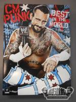 CM PUNK THE BEST IN THE WORLD