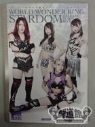 STARDOM OFFICIAL GUIDE BOOK Vol.133
