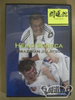 CURRICULUM-WHITE TO BLUE BELT HELIO SONECA